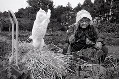 A Grandmother and her Cat - Imgur