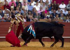 Spanish matador Jose Maria Manzanares performs a pass on a bull during a bullfight at the Maestranza bullring in Seville .