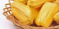 nama latin nangka,manfaat nangka muda,nangka muda bagi kesehatan,buah nangka muda,buah nangka untuk ibu hamil,biji nangka,