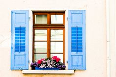 Window Spring Flowers Travel Fine Art Photography 4x6 by debstgo, $10.00