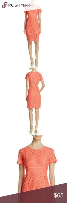 CALVIN KLEIN Floral Lace Short Sleeve Sheath Dress New With Tags - CALVIN KLEIN Floral Lace Short Sleeve Sheath Dress  Scoop neckline Back zipper closure Short sleeves; sheer lace Allover floral lace Sheath silhouette Lined Hits at knee; slit at front hem Approximate length: 38 inches Polyester/cotton/nylon; lining: polyester Dry clean Retails for $159.50 Calvin Klein Dresses