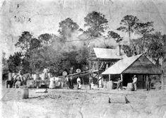 Old Florida, Vintage Florida, Florida Usa, Florida Travel, Florida Home, Micanopy Florida, Sunshine State, Historical Photos, Mouse Infestation