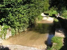 Source de la Largue - #Alsace