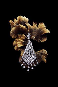AlmaKarina.com   Telegraph Luxury I Love Jewelry, Photo Jewelry, Jewelry Art, Fashion Jewelry, Jewelry Bracelets, Dark Photography, Jewelry Photography, Product Photography, Jewelry Editorial