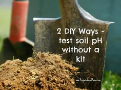 Learn about testing your soil pH without a kit by using a few readily available pantry staples. Know your soil pH and make amendments to boost garden yield Organic Gardening, Gardening Tips, Vegetable Gardening, Hydroponic Gardening, Indoor Gardening, Soil Ph, Garden Soil, Garden Plants, Garden Seeds