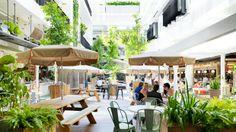 Palings - Restaurants - Concrete Playground Sydney - Level The Ivy, 330 George Street, Sydney Ivy Bar, Melbourne, Sydney, Outdoor Restaurant, Small Bars, Outdoor Playground, Outdoor Living, Outdoor Decor, Cafe Bar