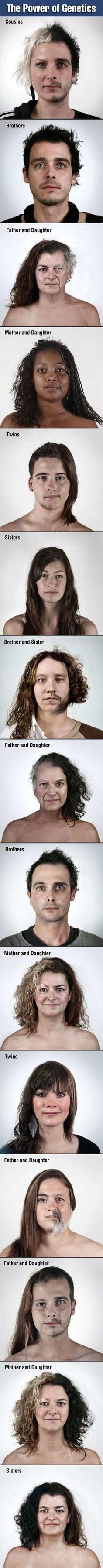 The Power of Genetics