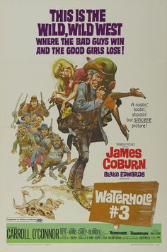 The Illustrated Movie Poster