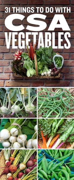 31 Things To Do With Confusing CSA Vegetables - solutions for too many kohlrabi, beets, chard, all the hard ones!