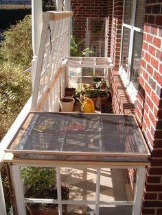 62 best mini glass greenhouses images glass house green houses rh pinterest com