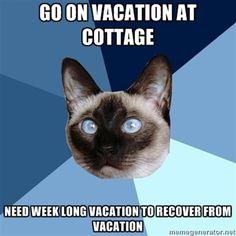 Chronic Illness | Adrenal Fatigue and Vacation | Humor