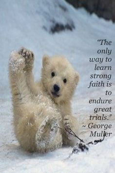 The only way to learn strong faith is to endure great trials.   George Muller.
