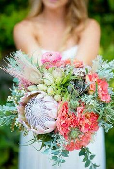 Pink Ranunculus, Pink/Coral Cottage Roses, Pink King Protea, Blushing Bride Protea, Pink Astilbe, Green Eryngium Thistle, Green Succulent, Misc. Greenery/Foliage & Bleached Peacock Feathers••••