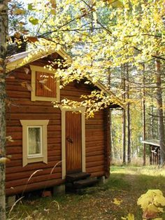 The peace, scent of autumn, crispy mornings with a promise of coming winter. Fishing, relaxing sauna, strolling around, shopping. Perfect autumn vacation in Finland. Loved it!
