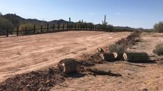 Native burial sites blown up for US border wall - BBC News Desert Ecosystem, Desert Environment, Real Id, Us Border, Political Events, Image Caption, Park Service, Archaeological Site, Natural Resources