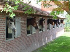 Paardenboxen en paardenstallen - Geert & Henk Trading | Geert en Henk Trading