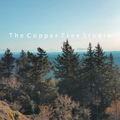 The Copper Tree Studio