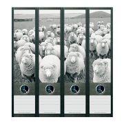 Stickers décoratifs de tranche de classeurs : modèle Moutons