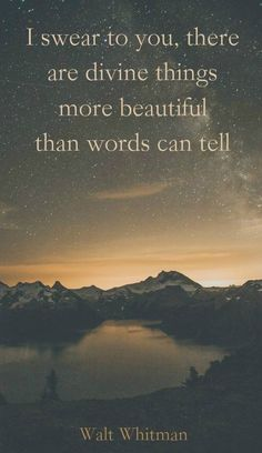 """""""I swear to you, there are divine things more beautiful than words can tell"""" ― Walt Whitman. Not a Walt Whitman fan, but I agree on this point. Great Quotes, Quotes To Live By, Inspirational Quotes, Motivational Quotes, Infp, Famous Quotes, Beautiful Words, Beautiful Things, Words Quotes"""
