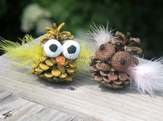 pinecone owls - paint and glue on some feathers and painted acorns (for eyes)