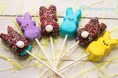 Chocolate Covered Peep-er Cottontail Pops #Recipe #Easter #Peeps #Dessert
