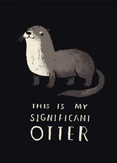 significant otter river otters cute pun puns animals funny silly wildlife nature