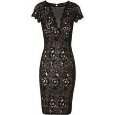 cea212073a4 Jane Norman Lace mesh panel dress Black - House of Fraser