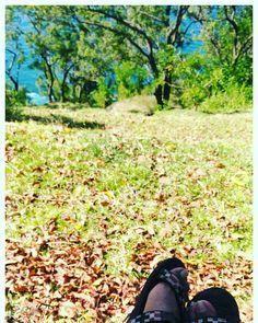 Green grass Fallen leaves Blue sea Wandering feet  #travel
