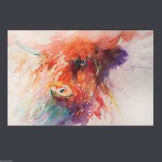 JEN BUCKLEY signed LIMITED EDITION PRINT of my original HIGHLAND COW large A3