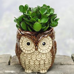 Awesome 50 Owl Home Decor Items Every Owl Lover Should Have