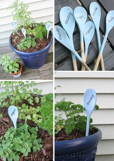 Wooden Spoon Herb Markers – Craftivity Designs