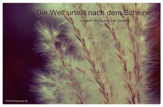 Mein Papa sagt...  Die Welt urteilt nach dem Scheine. Johann Wolfgang von Goethe  #Zitate #deutsch #quotes      Weisheiten & Zitate TÄGLICH NEU auf www.MeinPapasagt.de