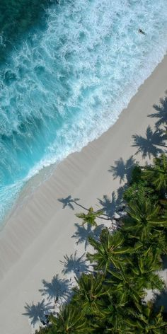 ♡♡♡♡You could go to the same beach as everyone else OR you could go to an https://www.exquisitecoasts.com/ beach. You choose! #Beaches #bestbeachesintheworld #tropicalislands #summerdestinations
