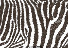 Black And White Zebra Background