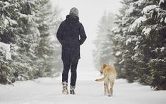 The temperature may be dropping, and it is getting darker earlier. These 10 gifts for dog owners are perfect for the dog park in the wintertime. Gifts For Dog Owners, Dog Gifts, Cute Dog Toys, Cold Weather Dresses, Winter Survival, Pet Paws, Dog Park, Working Dogs, Dog Walking