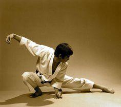 Help For martial arts Martial Arts Manga, Chinese Martial Arts, Kung Fu, Shotokan Karate, Kenpo Karate, Tai Chi Qigong, Fighting Poses, Martial Arts Techniques, Aikido