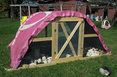 chicken tractor using cattle panels