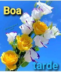 Good Afternoon, Good Morning Images, Portuguese, Inspiration Quotes, Buen Dia, Messages, Flowers, Bom Dia, Peace