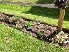 Sophie's Garden 2014