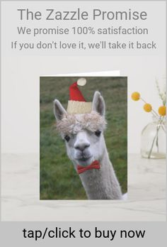 Shop Santa's Helper Loveable Alpaca in Red Hat Holiday Card created by MemoryLaneDesigns. Personalize it with photos & text or purchase as is! Holiday Cards, Christmas Cards, Merry Christmas, Christmas Decorations, Xmas, Llama Christmas, Red Hats, Photo Cards, Festive