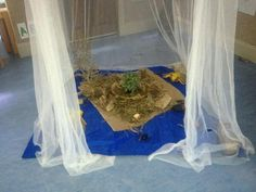 """An indoor bug exploration area at Oac North Parramatta from Only About Children @OacChildcare on Twitter ("""",)"""
