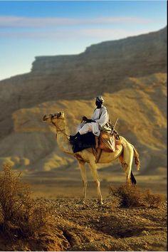 Saudi - Middle East - Resistance by AL-AMMAR http://al-ammar.deviantart.com/art/Resistance-136961237