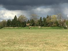 Stormy skies at kenley common Croydon