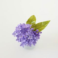 Purplish blue for the middle of the week. A little color goes a long way with these cuties.  #petalsweet #sugarflowers #lilacs #purple #tiny #blossoms #weddingcakes #cakedecorating #cake #sugarart #sugarartist #gumpasteflowers #sugarcraft #sugarflowerclasses #modernsugarflowers #fondant