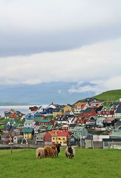 Nólsoy - Faroe Islands (by DavideGorla) Beautiful Places To Travel, Amazing Places, Fjord, Faroe Islands, Places Of Interest, Travel Aesthetic, Wonders Of The World, Places To See, Alaska