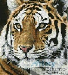 """Mini Siberian Tiger"" by Artecy Cross Stitch Cross Stitch Designs, Cross Stitch Patterns, Christmas Embroidery Patterns, Embroidery Designs, Latch Hook Rug Kits, Peler Beads, Tiger Face, Minecraft Pixel Art, Cross Stitch Animals"