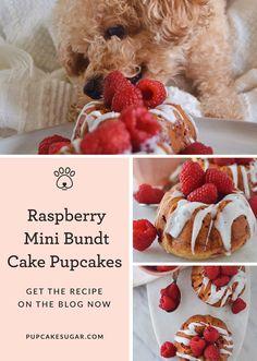 "Sugar's Spinning ""No"" Upside Down & Enjoying These Raspberry Mini Bundt Cake Pupcakes Puppy Treats, Diy Dog Treats, Homemade Dog Treats, Healthy Dog Treats, Dog Biscuit Recipes, Dog Treat Recipes, Dog Food Recipes, Pupcake Recipe, Dog Bakery"