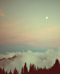 """""""home"""" is what this said, enchantment at the top of the mountain"""