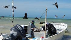 Pescadores y armadores protestan por aumento de robos en la costa yucateca