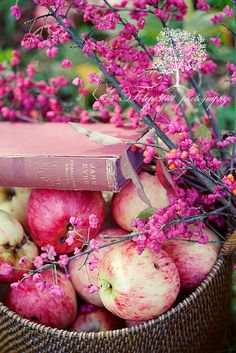 ♥ This looks like a pretty vignettte, but we only read while we are having lunch in the orchard............